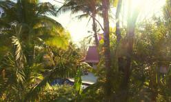 Sunset Shack Hotel - Hostel 1